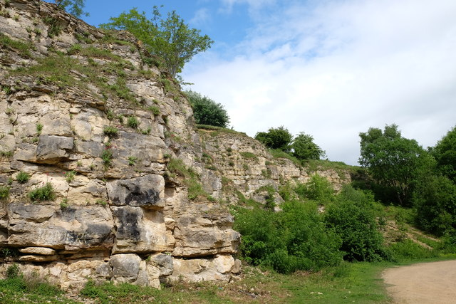 Old quarry on Leckhampton hill