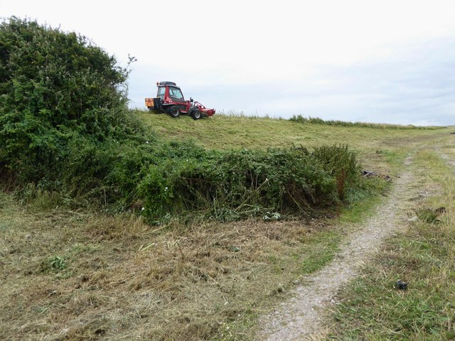 Grass cutting on the sea wall