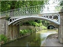 ST7565 : Victorian bridge in Sydney Gardens, Bath by Richard Humphrey