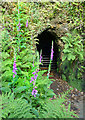 SX4269 : Mine Entrance at Danescombe Mine by Des Blenkinsopp