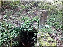 SE1039 : New Mill Gill - Bingley by John Davies