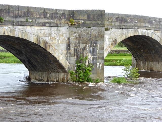 Burnsall Bridge  (detail)