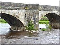 SE0361 : Burnsall Bridge  (detail) by Oliver Dixon