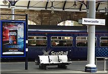 NZ2463 : Scotrail train at Newcastle Central railway station by Thomas Nugent