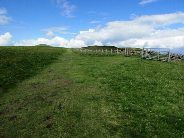 Path from Craigmead car park, Lomond Hills