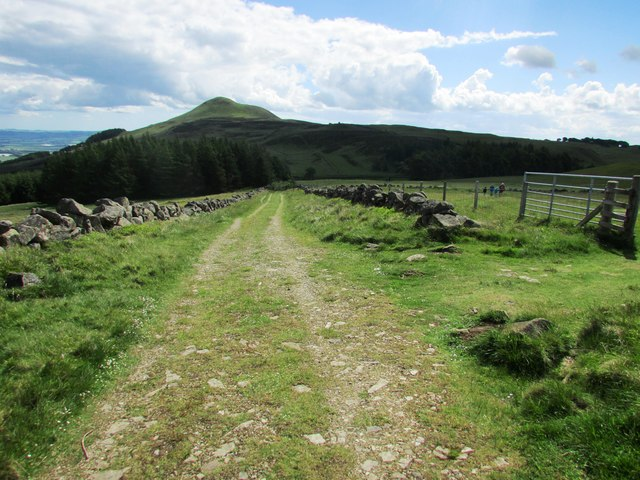 View of East Lomond from track to West Lomond