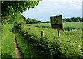 TL9097 : Peddars Way at Boston Plantation by Mat Fascione