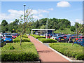 NZ3044 : Planted beds at Belmont Park and Ride by Trevor Littlewood