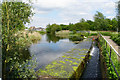 SJ5887 : Outflow from the St Helens Canal by Bill Boaden
