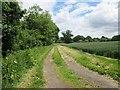 TQ1414 : Farm Track by Peter Holmes