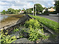 NS1780 : Shore Road at Ardnadam by M J Richardson
