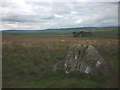 NY9918 : The Butter Stone above Cotherstone by Karl and Ali
