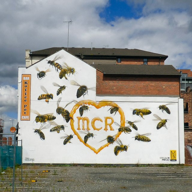 22 Bees for Manchester