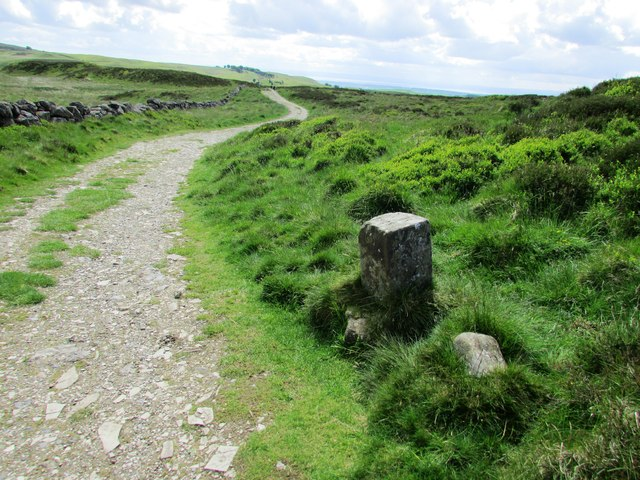 Boundary Stone, Lomond Hills