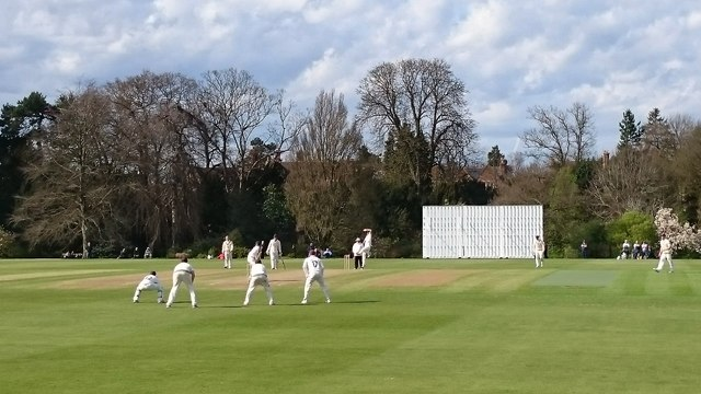 Cricket at The University Parks
