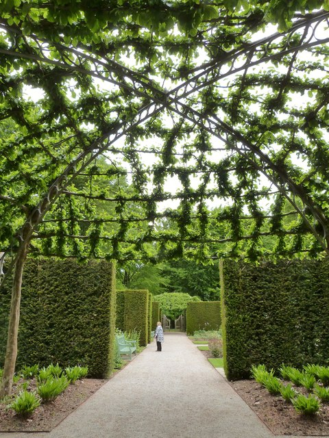 Pergola at the gardens of Castle Drogo