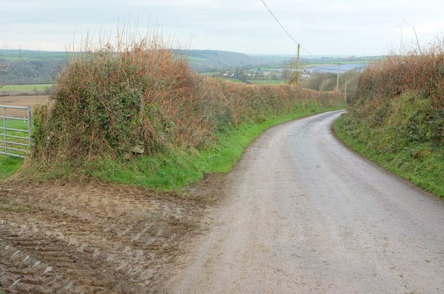 Lane to St Teath