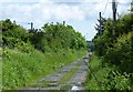 NU0543 : Track beside the East Coast Main Line Railway by Russel Wills