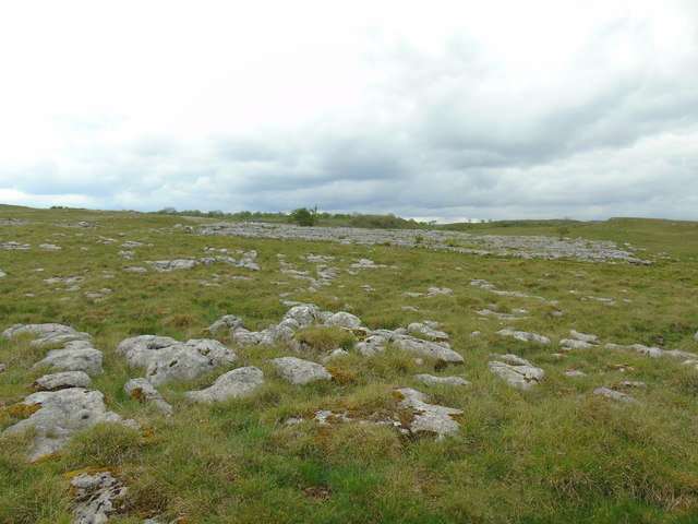 Ancient settlements and pasture (2)