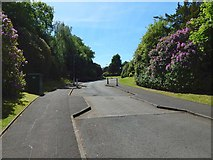 NS4762 : Road leading into Manor Park by Lairich Rig