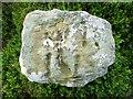NO2007 : Boundary Stone, Lomond Hills by Bill Kasman