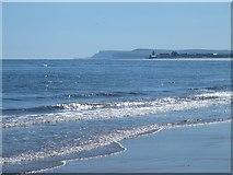 NZ5626 : Coatham Sands (2a) by Mike Quinn
