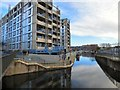 SJ8598 : Cotton Field Wharf Apartments by Gerald England