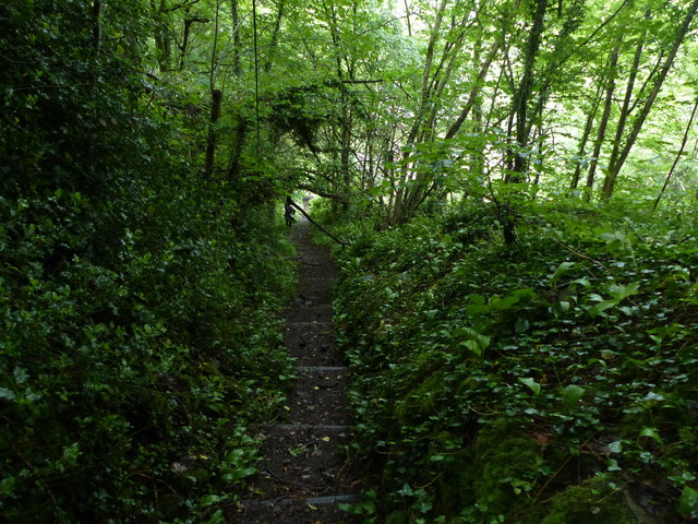 Footpath above Matlock Bath