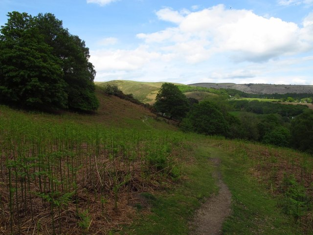 Footpath to Valle Crucis