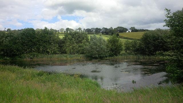 Pond on the Rudhall Brook