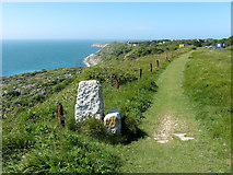 SY7071 : Coast path on Portland by Gareth James
