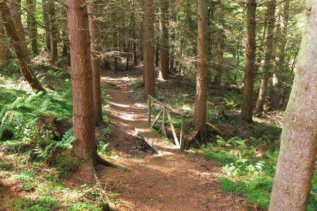 Woodland path, Edgelaw Reservoir