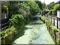 TQ3296 : The New River in Enfield by Marathon