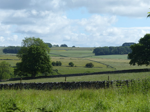 View from Milkings Lane