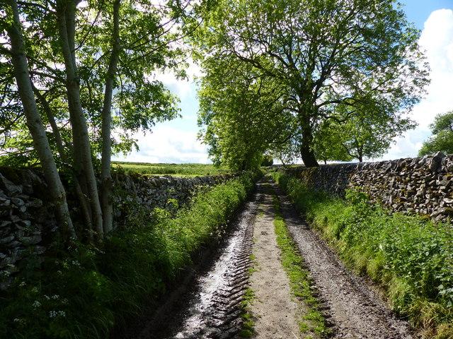 Milkings Lane near Monyash
