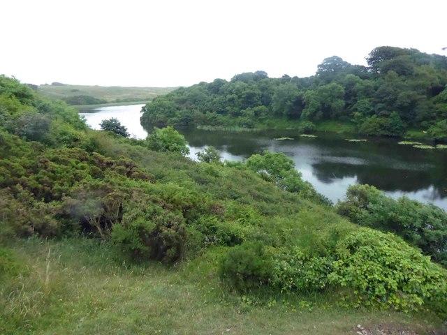 Bosherton lily lakes