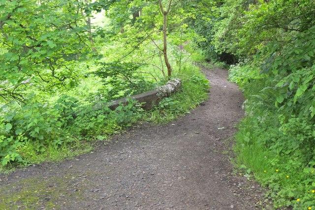 Path at Shiel Bridge near Capielaw