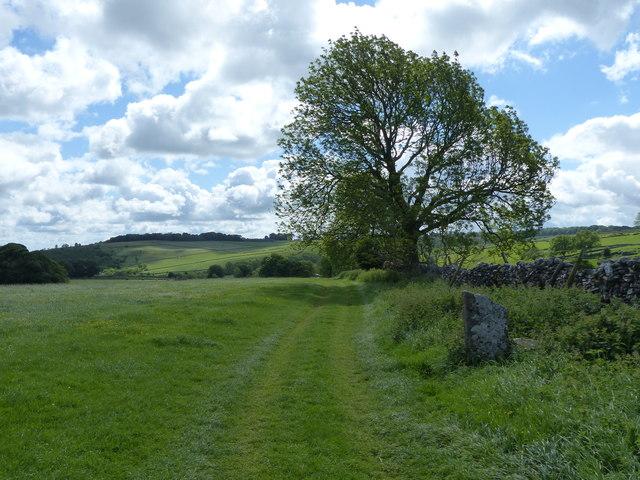 The Limestone Way approaching One Ash Grange Farm