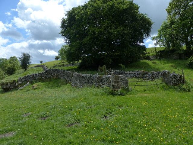 Path Lathkill Dale
