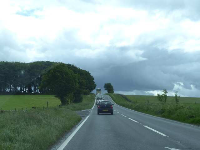 A515 and Blakemoor Plantation