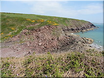 SM8003 : The Pembrokeshire Coast Path near Mill Bay by Dave Kelly