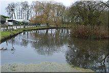 TA0256 : River Hull by N Chadwick