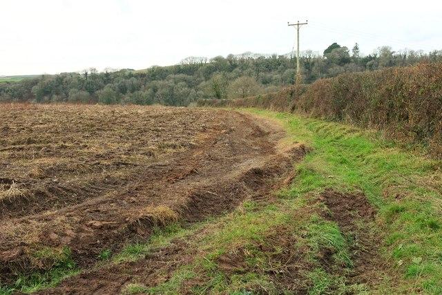 Field east of Polmorla
