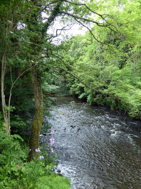 River Derwent, Gibside