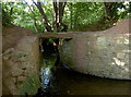 ST5661 : Rustic crossing by Neil Owen