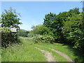 TQ5393 : The London LOOP north of Harold Hill by Marathon