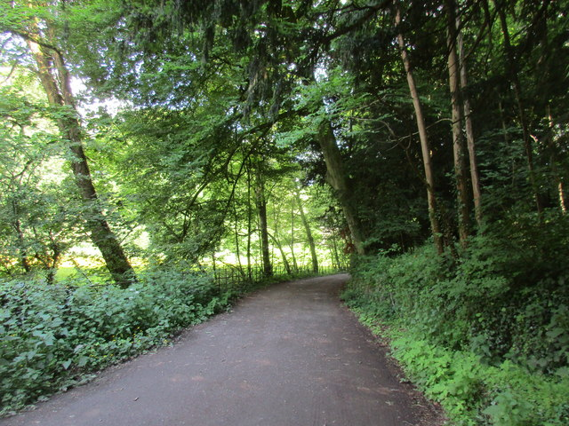 Bridleway to Upper Swell