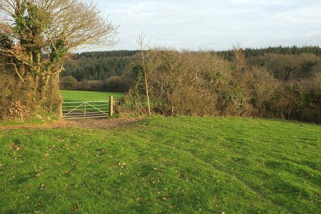 Gate between fields, Burlawn