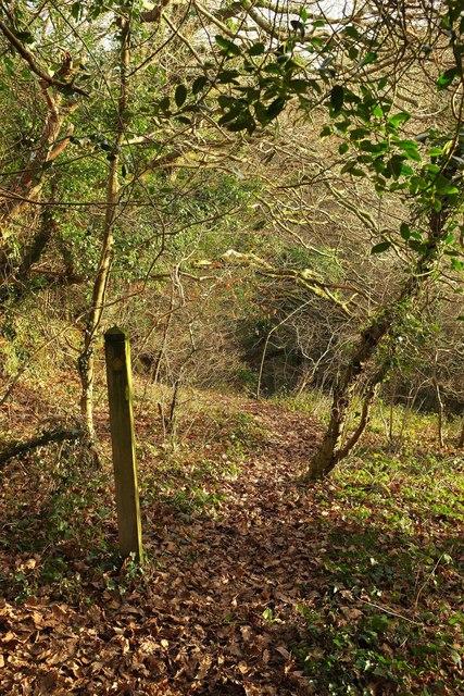 Path to Hustyn Mill