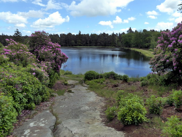 Nelly Moss Lake, Cragside